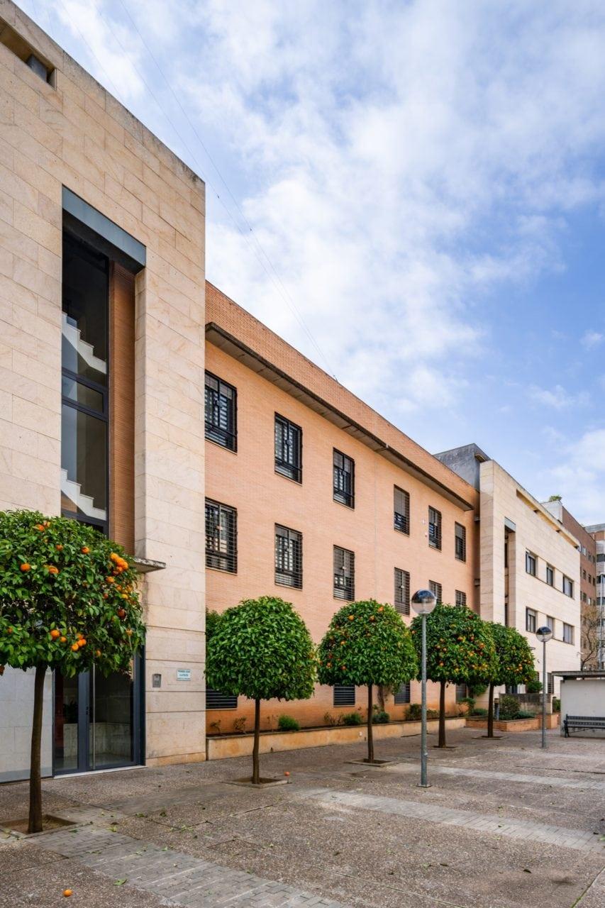 Vista lateral de la fachada principal y los naranjos de la calle