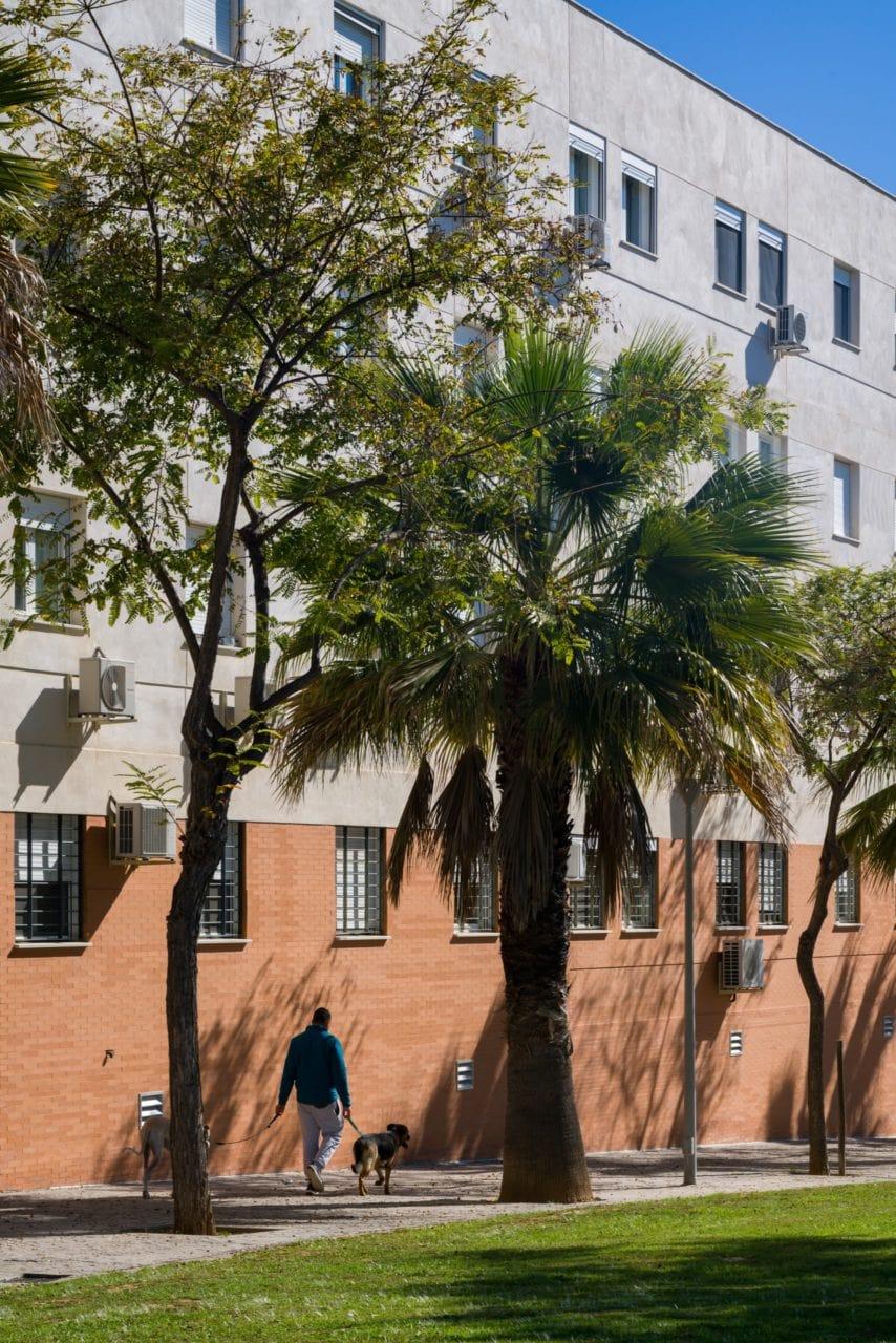 Vista del edificio desde la zona ajardinada cercada